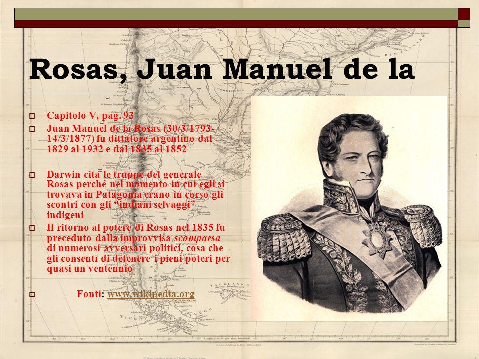 Rosas, Juan Manuel de la Capitolo V, pag. 93