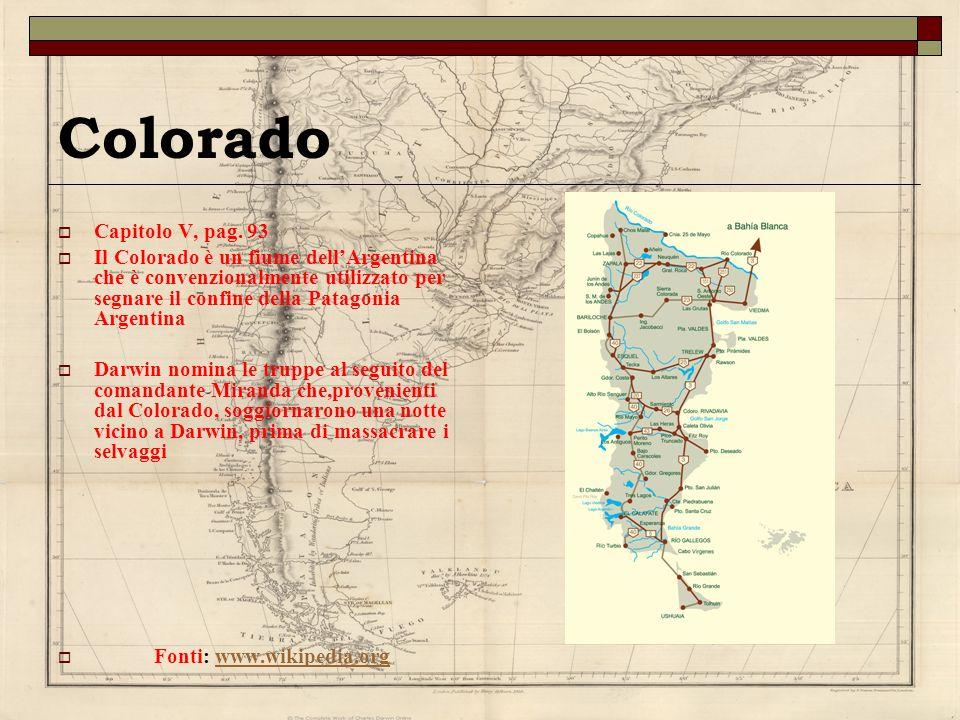 Colorado Capitolo V, pag. 93