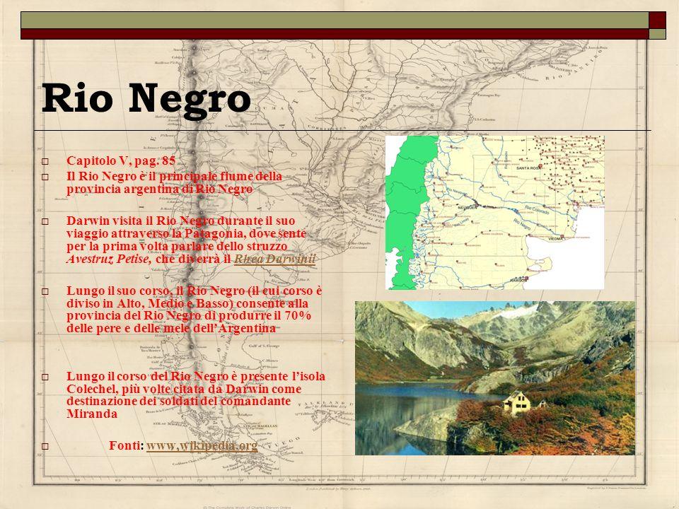 Rio Negro Capitolo V, pag. 85