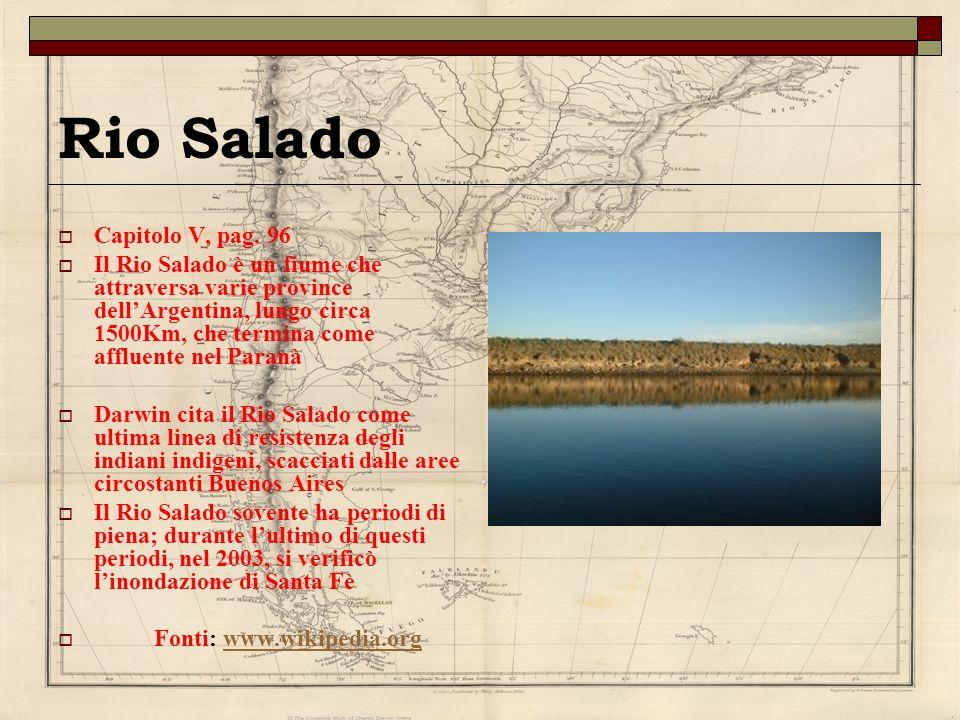 Rio Salado Capitolo V, pag. 96