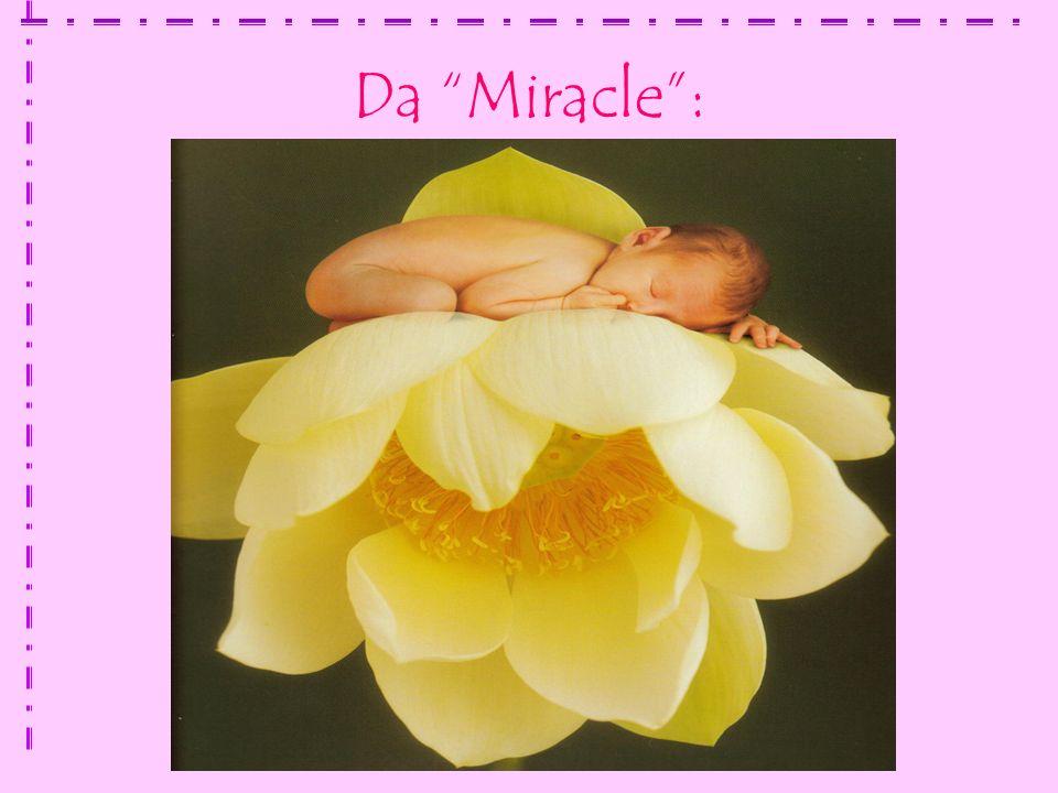 Da Miracle :