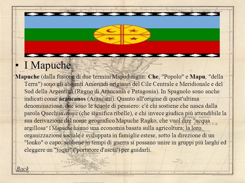 I Mapuche