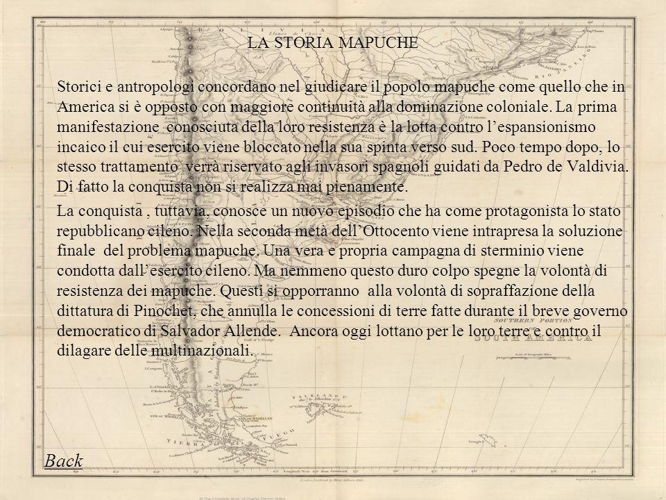LA STORIA MAPUCHE