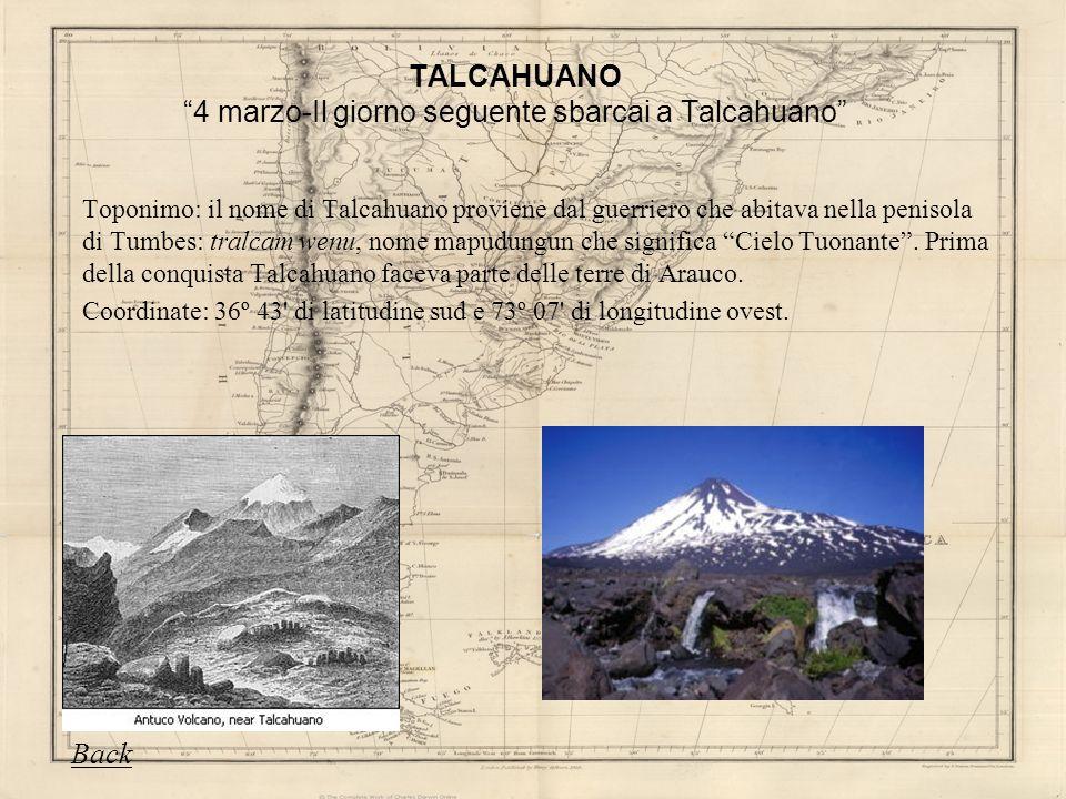 TALCAHUANO 4 marzo-Il giorno seguente sbarcai a Talcahuano