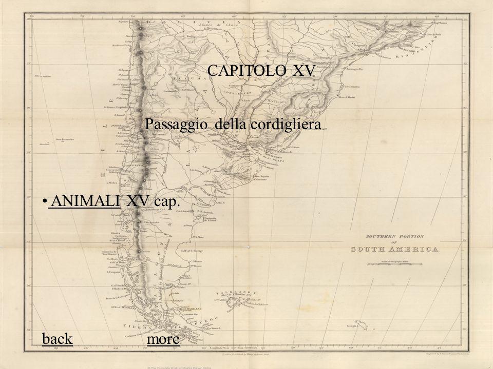 CAPITOLO XV Passaggio della cordigliera ANIMALI XV cap. back more