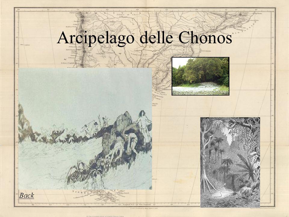 Arcipelago delle Chonos