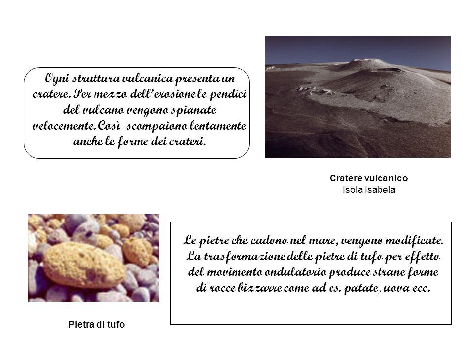 Ogni struttura vulcanica presenta un cratere