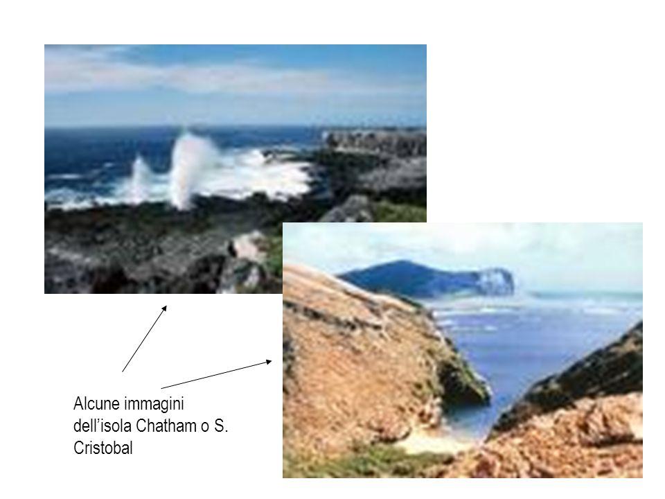 Alcune immagini dell'isola Chatham o S. Cristobal