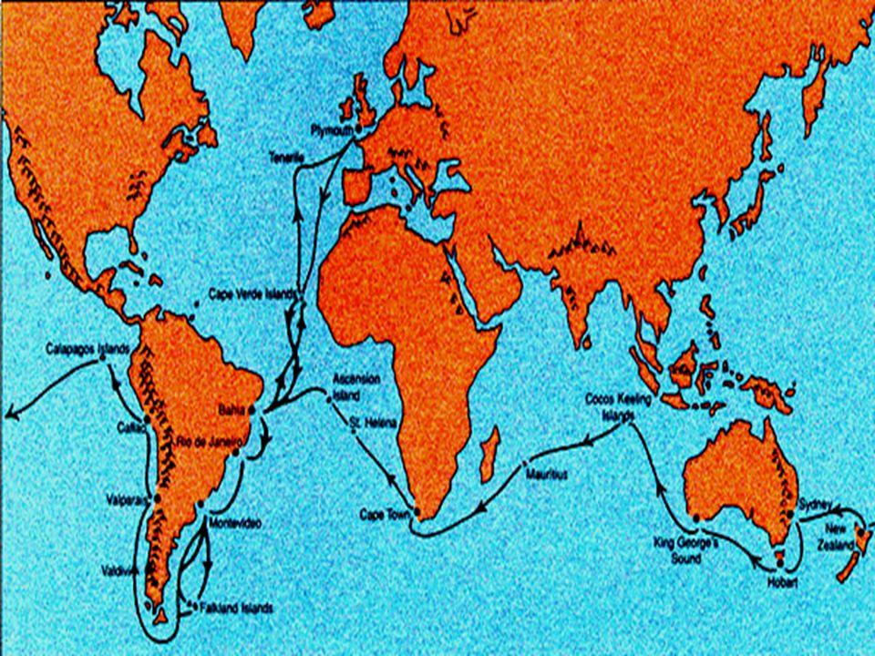 Nelle isole Galapagos, il naturalista Charles Darwin ha raccolto esemplari di fringuelli e ha notato la loro appartenenza a diverse specie in base all'isola di provenienza. Si è anche reso conto che la popolazione locale li chiamava in modi differenti a seconda dell'isola dalla quale provenivano. Notò la stessa cosa anche per le specie di tartarughe, che purtroppo furono decimate dalle incursioni nell'arcipelago dei bucanieri.