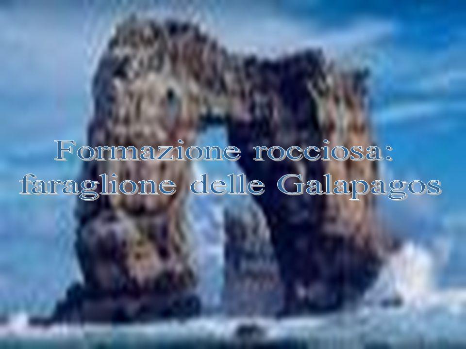 faraglione delle Galapagos