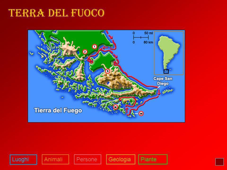 TERRA DEL FUOCO Luoghi Animali Persone Geologia Piante