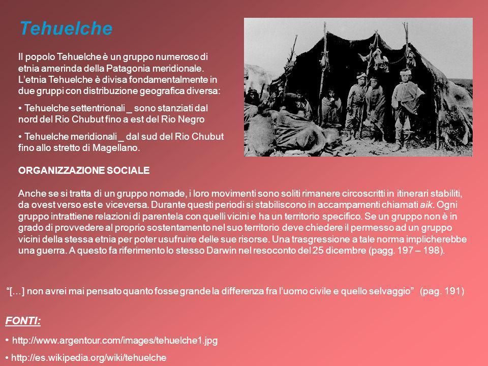 Tehuelche FONTI: http://www.argentour.com/images/tehuelche1.jpg