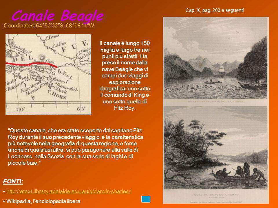 Canale Beagle FONTI: Coordinates: 54°52′32″S, 68°08′11″W