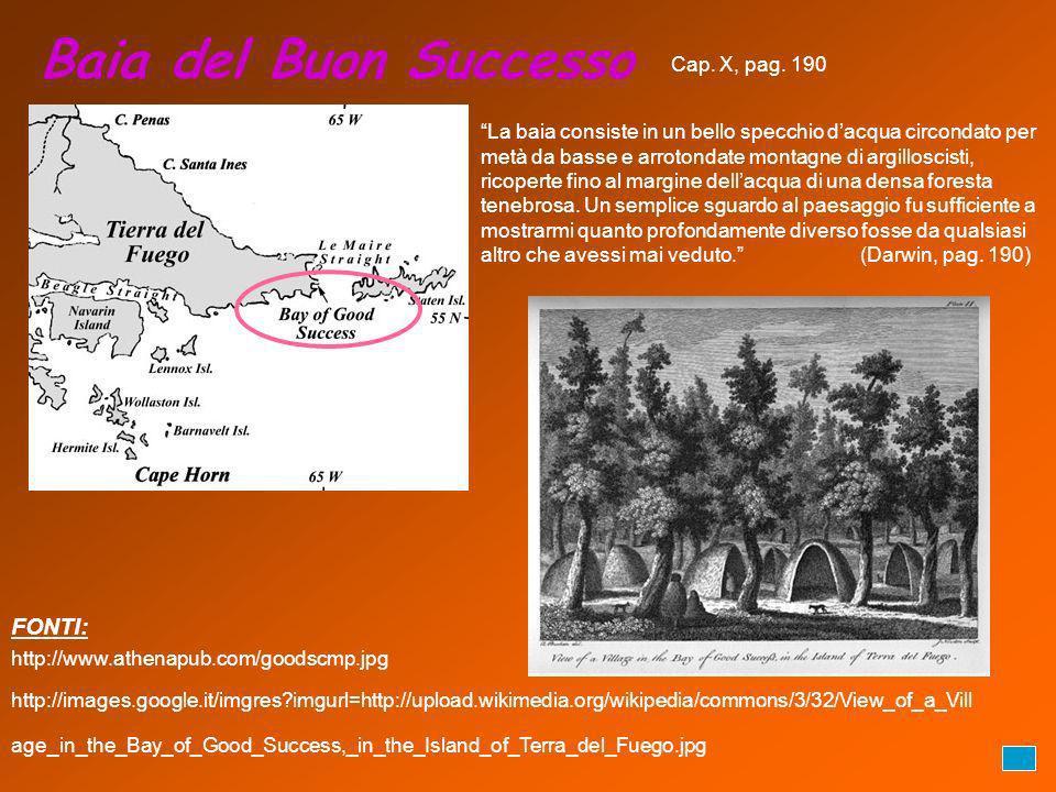 Baia del Buon Successo FONTI: Cap. X, pag. 190