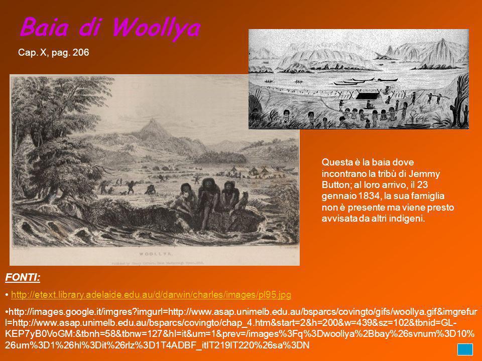 Baia di Woollya FONTI: Cap. X, pag. 206