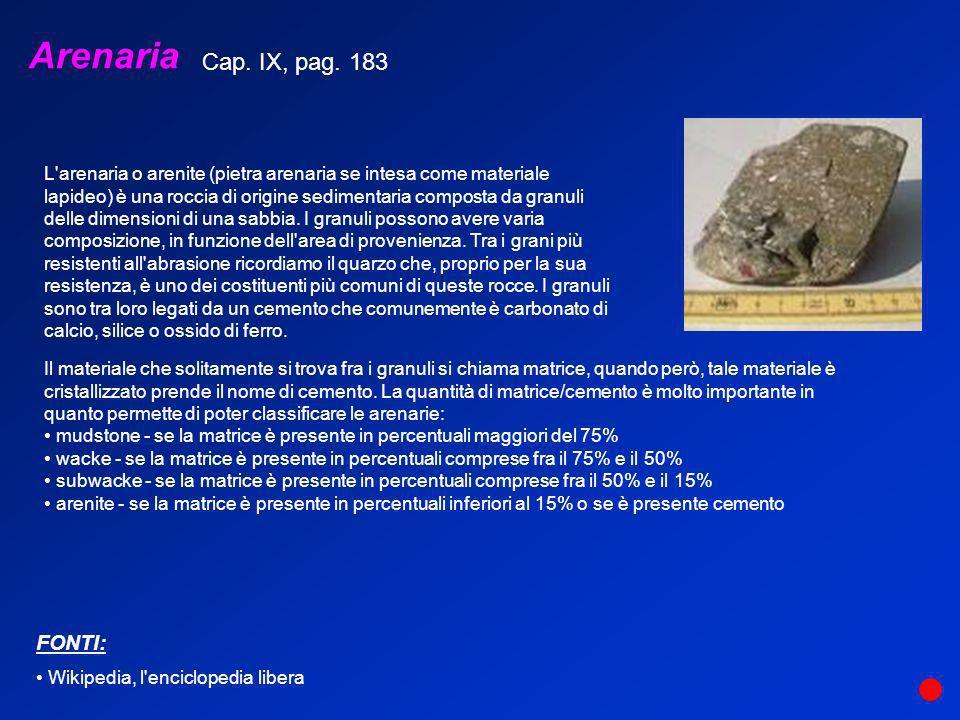 Arenaria Cap. IX, pag. 183 FONTI:
