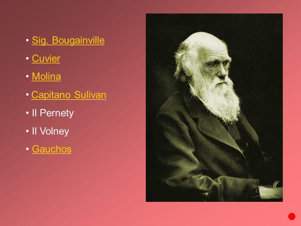 Sig. Bougainville Cuvier Molina Capitano Sulivan Il Pernety Il Volney Gauchos