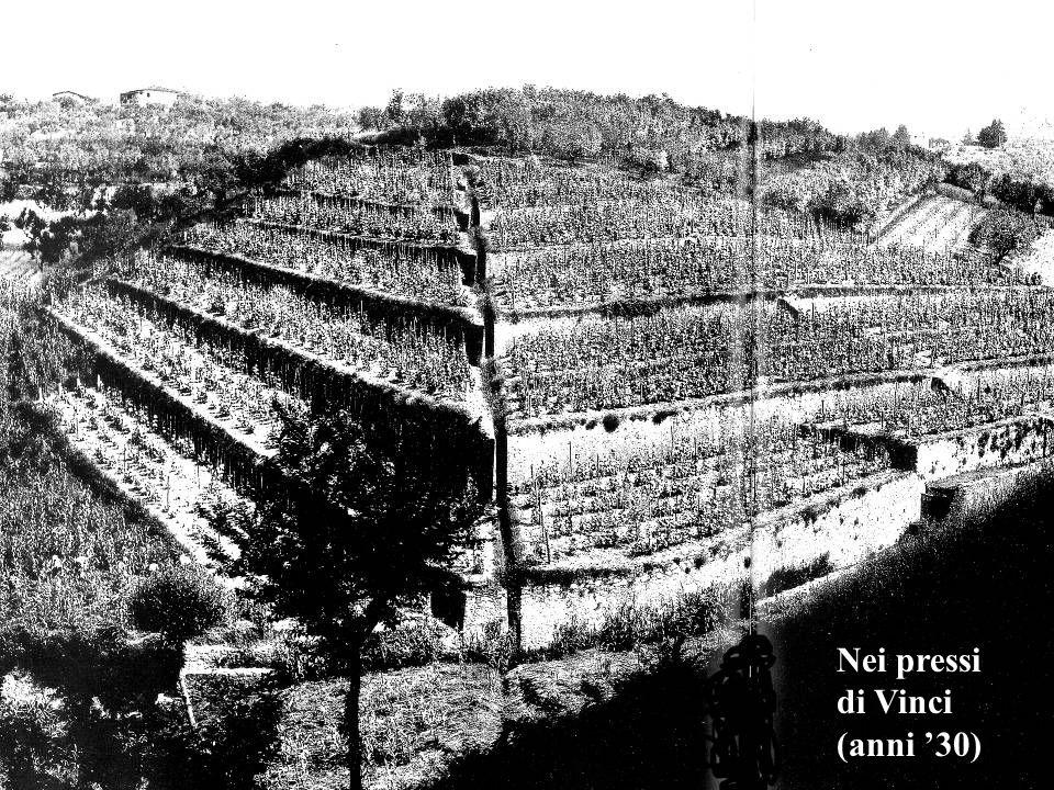Nei pressi di Vinci (anni '30)