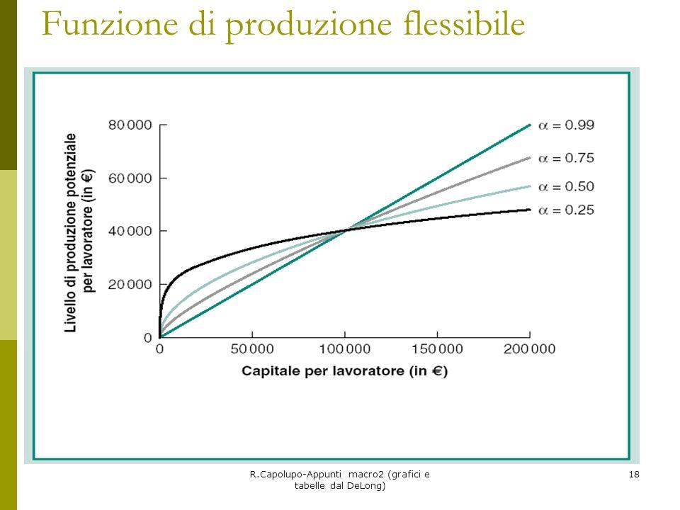 Funzione di produzione flessibile