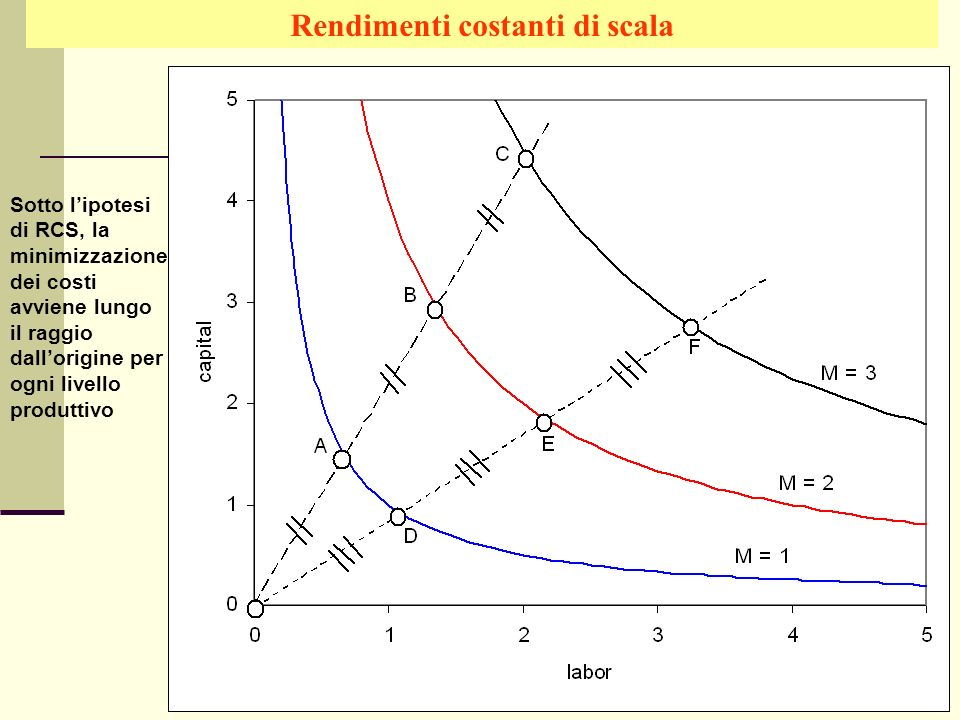 Rendimenti costanti di scala