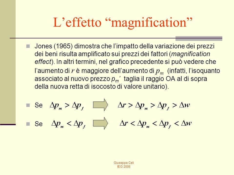 L'effetto magnification