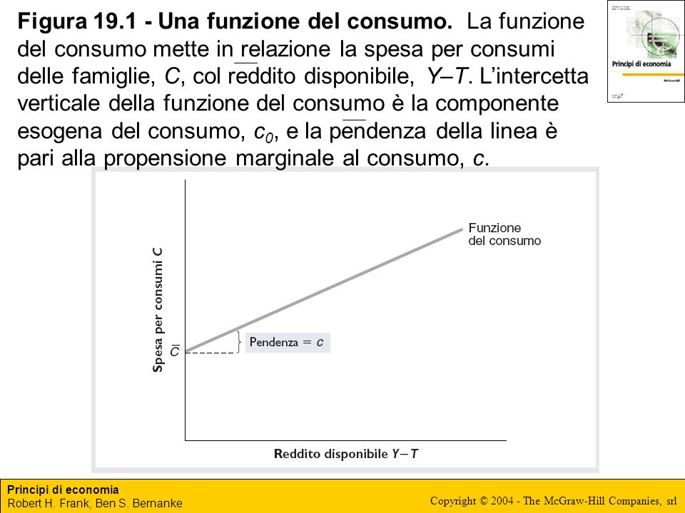Figura 19. 1 - Una funzione del consumo