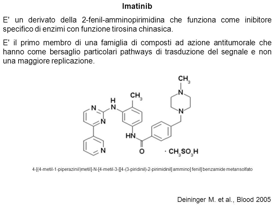 Imatinib E un derivato della 2-fenil-amminopirimidina che funziona come inibitore specifico di enzimi con funzione tirosina chinasica.