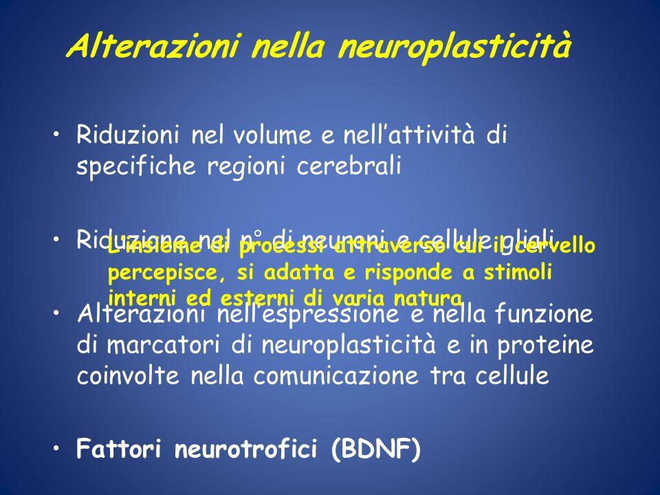 Alterazioni nella neuroplasticità