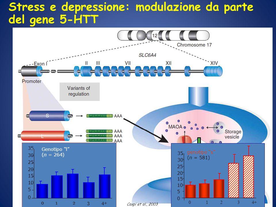 Stress e depressione: modulazione da parte del gene 5-HTT