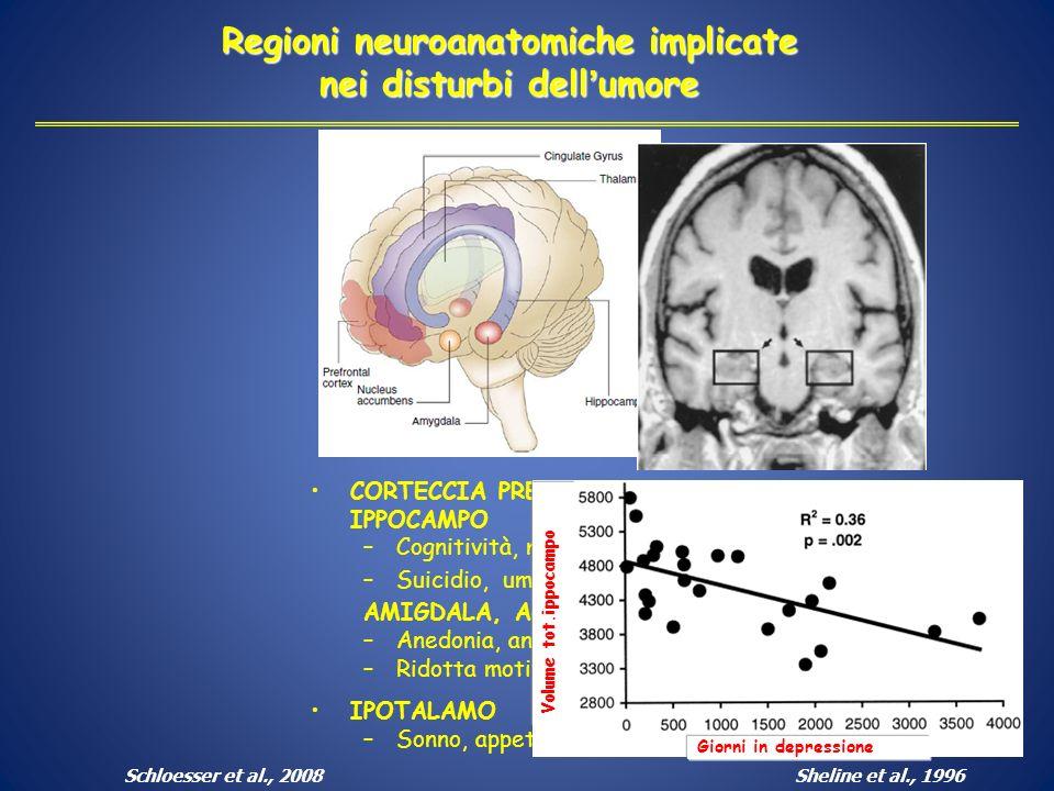 Regioni neuroanatomiche implicate nei disturbi dell'umore