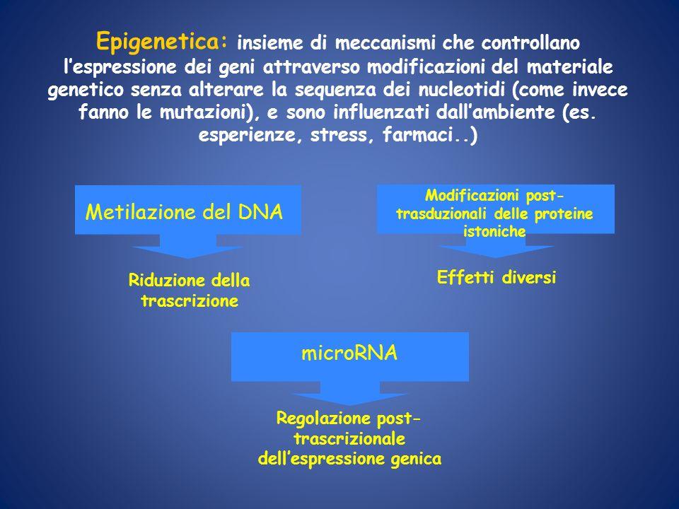 Epigenetica: insieme di meccanismi che controllano l'espressione dei geni attraverso modificazioni del materiale genetico senza alterare la sequenza dei nucleotidi (come invece fanno le mutazioni), e sono influenzati dall'ambiente (es. esperienze, stress, farmaci..)