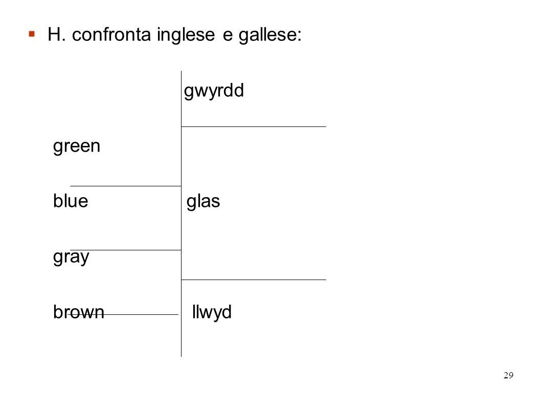 H. confronta inglese e gallese:
