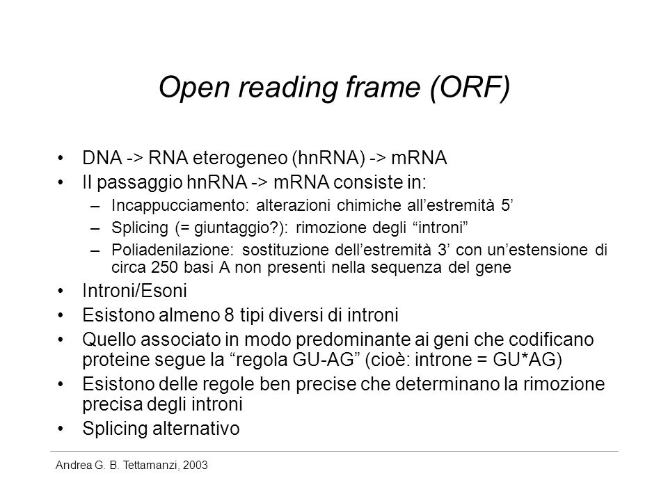 Open reading frame (ORF)