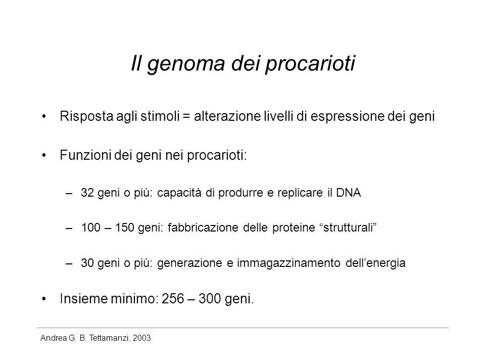 Il genoma dei procarioti