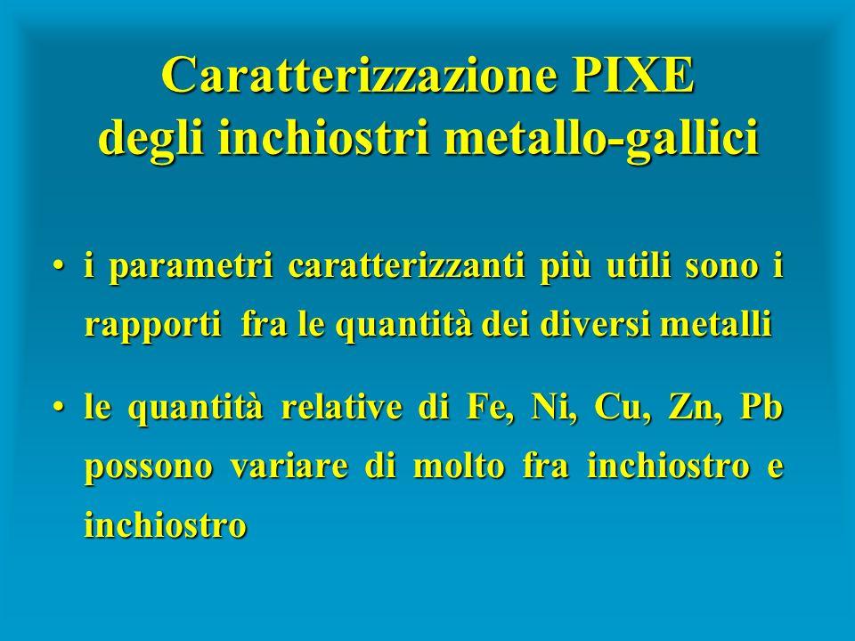 Caratterizzazione PIXE degli inchiostri metallo-gallici