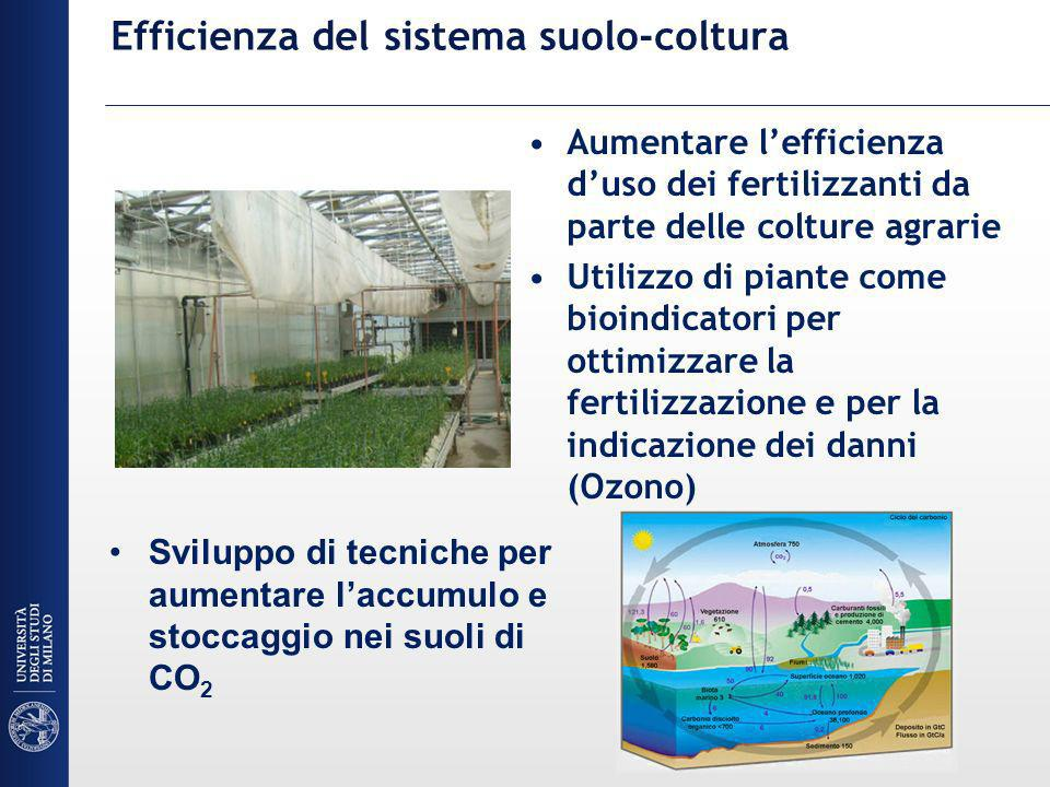 Efficienza del sistema suolo-coltura