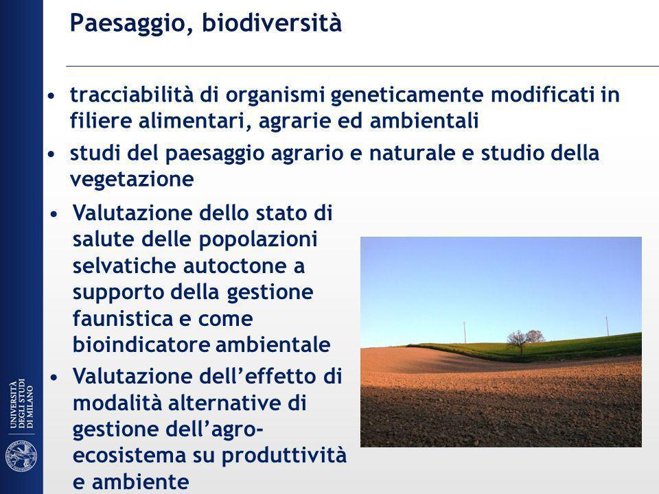 Paesaggio, biodiversità