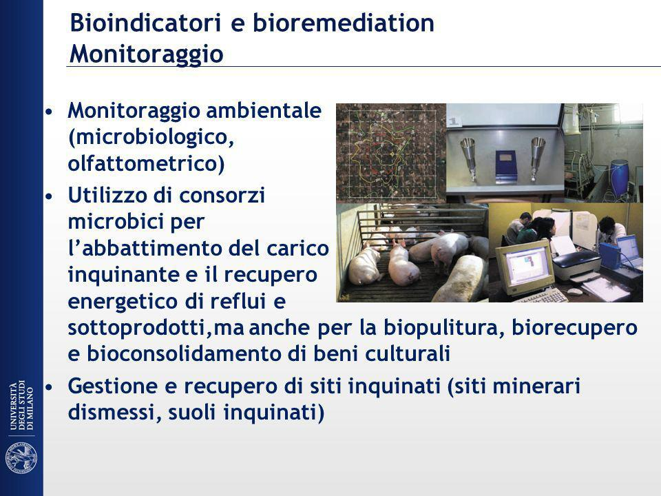 Bioindicatori e bioremediation Monitoraggio