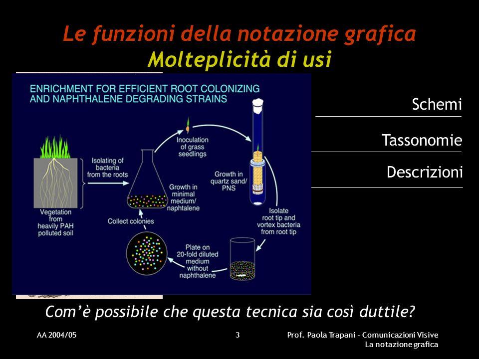 Le funzioni della notazione grafica Molteplicità di usi