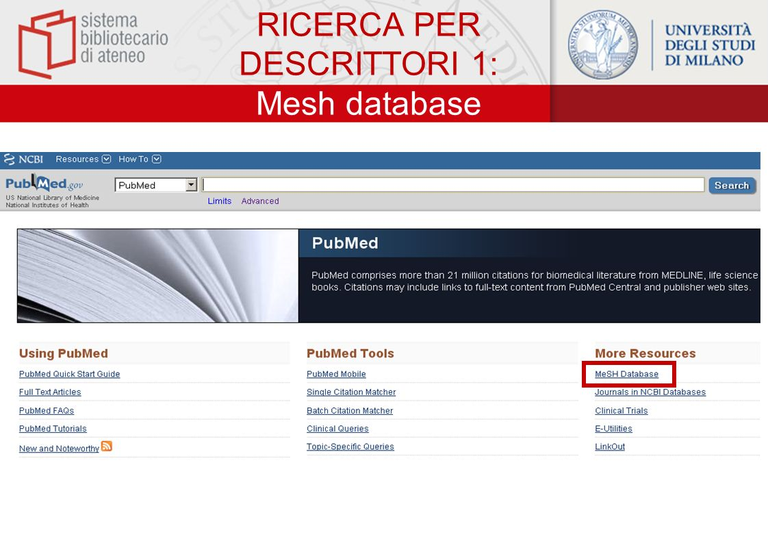 RICERCA PER DESCRITTORI 1: Mesh database