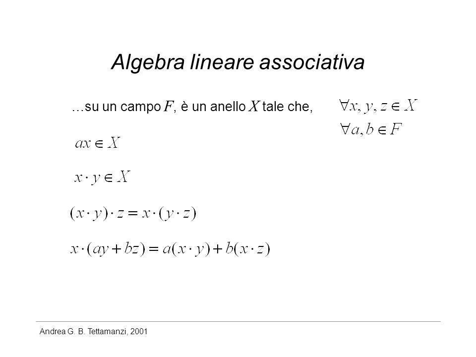 Algebra lineare associativa