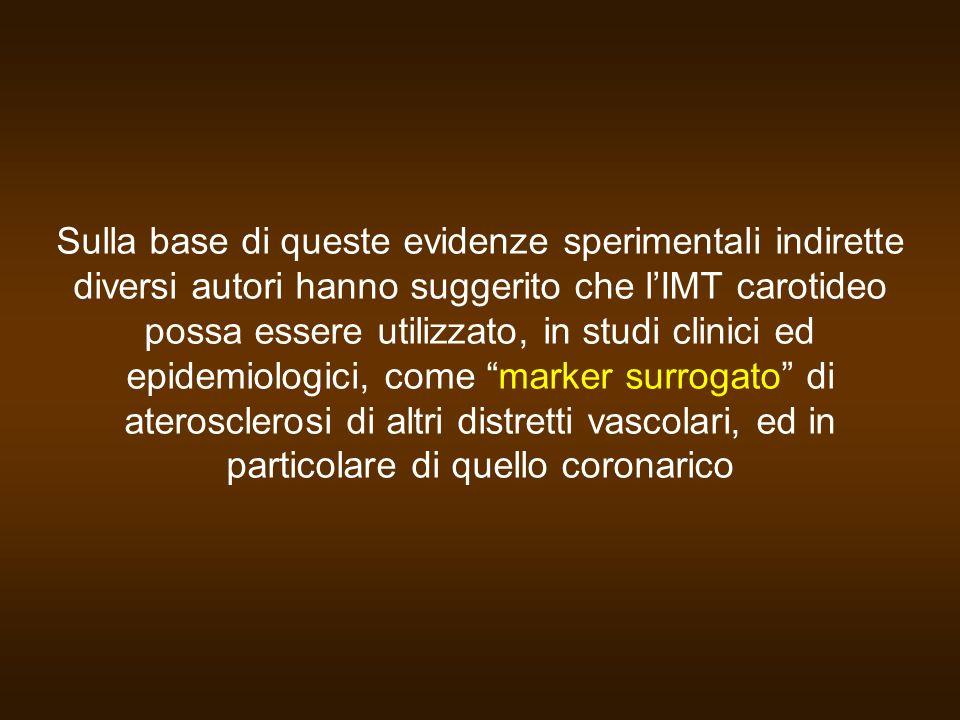 Sulla base di queste evidenze sperimentali indirette diversi autori hanno suggerito che l'IMT carotideo possa essere utilizzato, in studi clinici ed epidemiologici, come marker surrogato di aterosclerosi di altri distretti vascolari, ed in particolare di quello coronarico