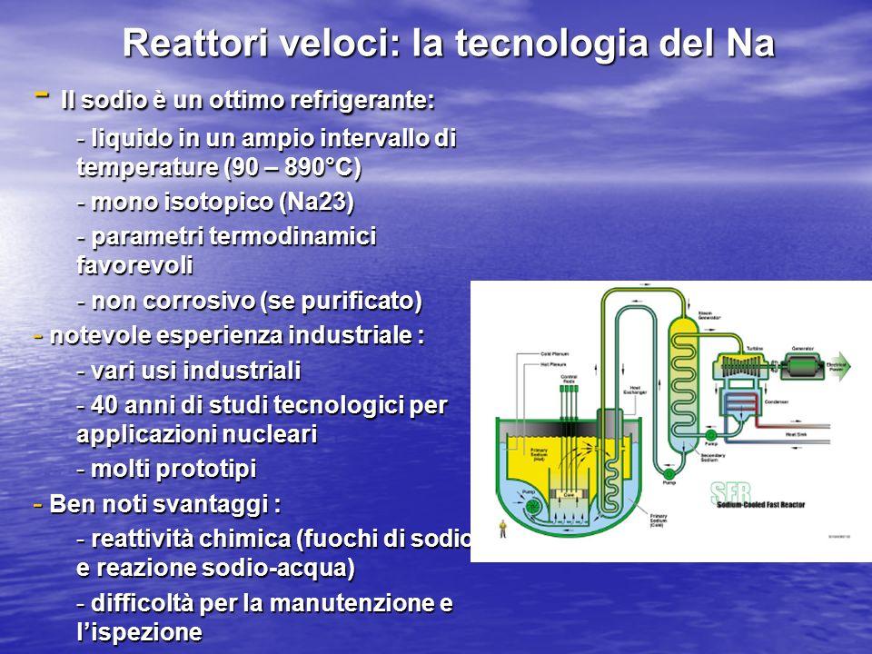 Reattori veloci: la tecnologia del Na