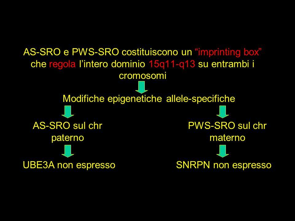 Modifiche epigenetiche allele-specifiche