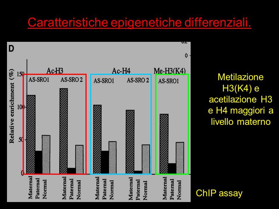Caratteristiche epigenetiche differenziali.