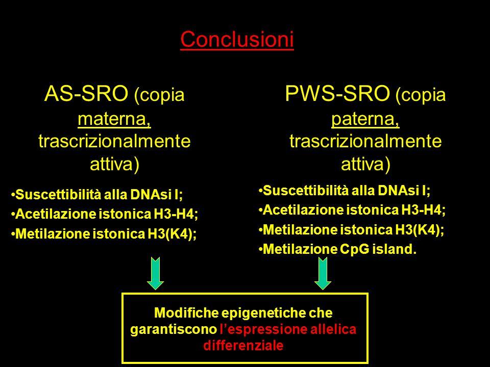 AS-SRO (copia materna, trascrizionalmente attiva)