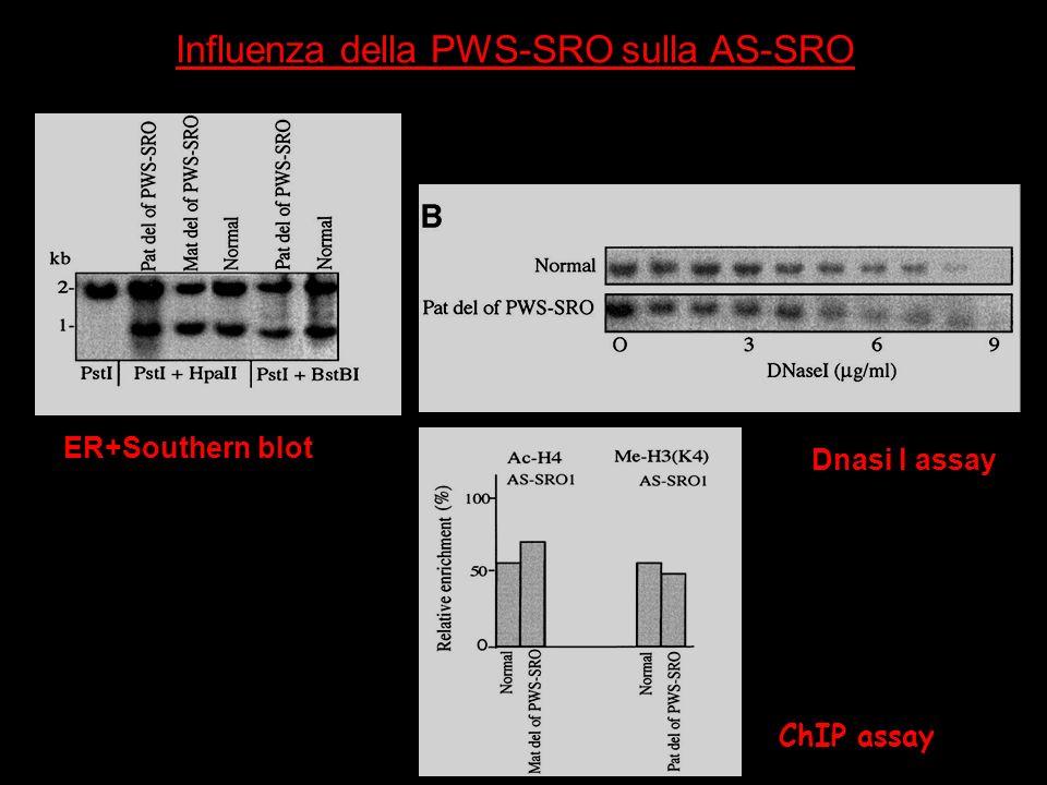 Influenza della PWS-SRO sulla AS-SRO