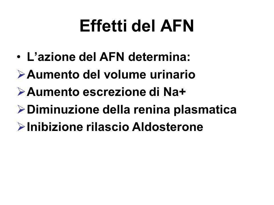 Effetti del AFN L'azione del AFN determina:
