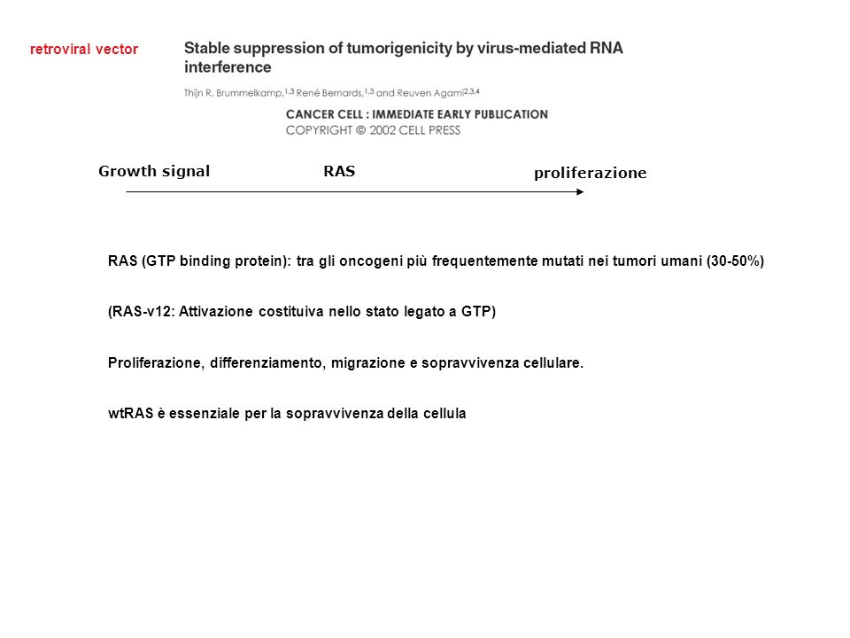 retroviral vector Growth signal. RAS. proliferazione.