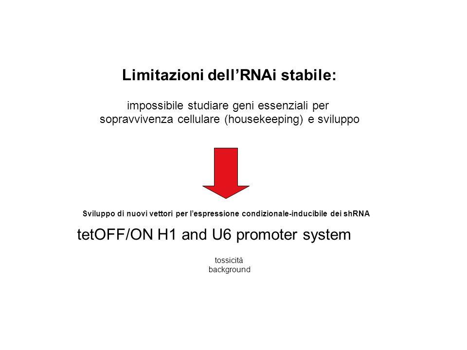Limitazioni dell'RNAi stabile: